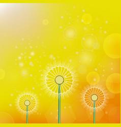 spring dandelion sun background vector image