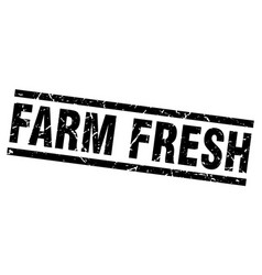 Square grunge black farm fresh stamp vector