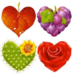 shape of heart set vector image vector image