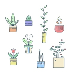 Line house plants icons vector image vector image
