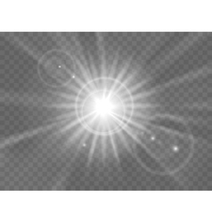 Abstract light rays vector
