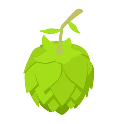 beer hop icon isometric style vector image