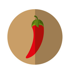 Chilli pepper fresh vegetable isolated icon vector