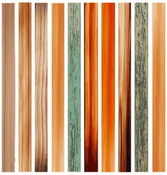 Colorful Texture of Wood vector image