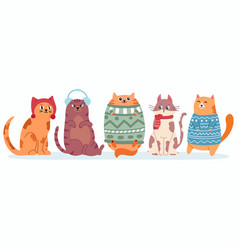cute cats in sweater happy fat kittens for new vector image