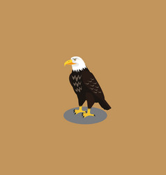 eagle in pose vector image