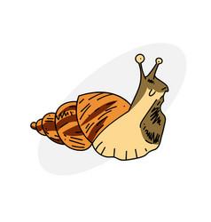 gross slug vector image