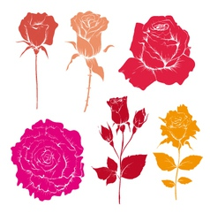 Hand drawn rose flowers set vector