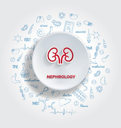 icons for medical specialties nephrology concept vector image