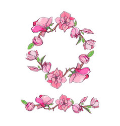 magnolia flower set with wreath hand drawn vector image