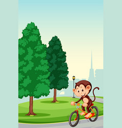 monkey riding bicycle in park vector image
