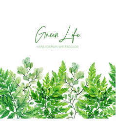watercolor green leaves ferns seamless border vector image