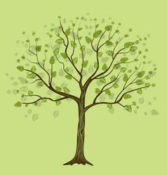 decorative tree with leaves vector image