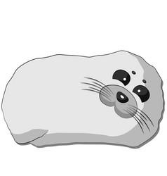 Cute cartoon seal draw in color vector