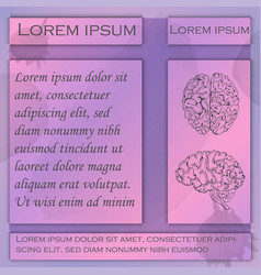 Flyer for human brain studies vector