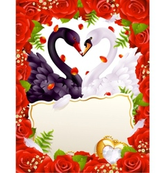 Greeting card with swans in love vector