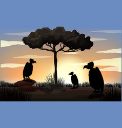 outdoor nature silhouette sunset scene vector image