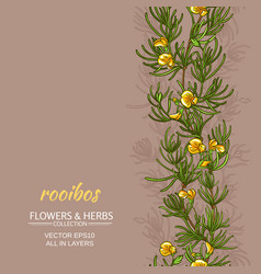 Rooibos background vector