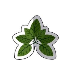 Sticker green leaves with ramifications vector