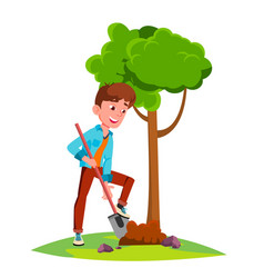 teen boy plant a tree isolated vector image