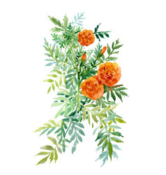 Watercolor hand drawn painting with orange vector