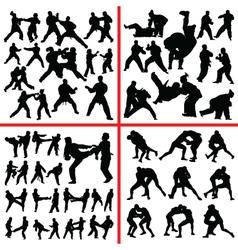 martial art mix vector image