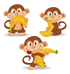 monkey and banana vector image