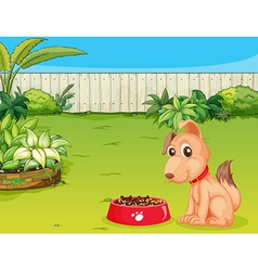 Dog with food vector image vector image