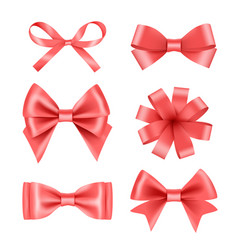 Bow with ribbons satin silk decoration for vector