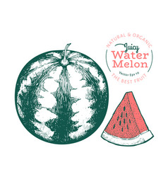 Watermelon and a piece watermelon hand drawn vector