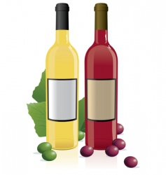 red amp white wine bottles vector image vector image