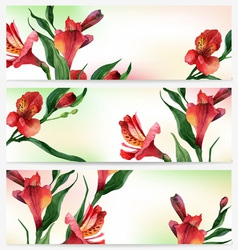 header bright floral backgrounds vector image vector image