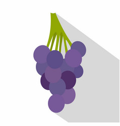 bunch of blue grapes icon flat style vector image vector image