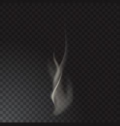 delicate cigarette smoke waves on transparent vector image