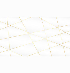 Abstract golden lines on white background design vector