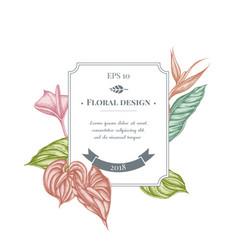 Badge design with pastel gloriosa anthurium vector