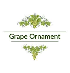 grape ornament vector image