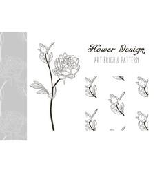 Peony flower design art brush and pattern vector