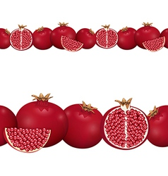 seamless border of pomegranate vector image