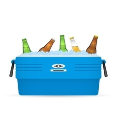 Ice cooler or beer in box on white vector image