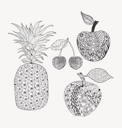 hand drawn doodle set of fruits for coloring book vector image