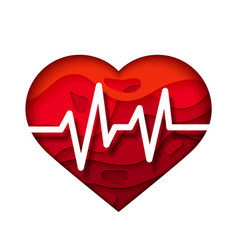 Bright red heart with cardiogram medical design vector