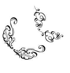 collection of hand drawn ink curls vector image
