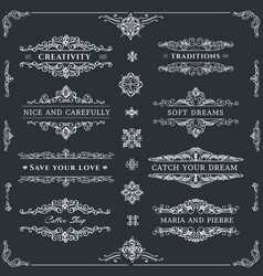 collection of nice template vector image