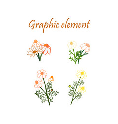 design elements floral elements vector image