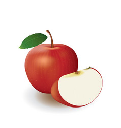 red apple and slice on white background vector image