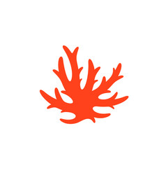 red coral vector image
