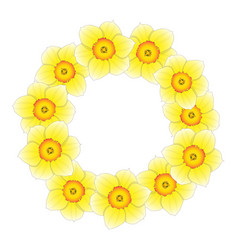 Yellow daffodil - narcissus flower wreath vector
