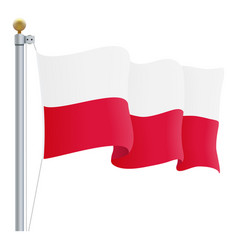 waving poland flag isolated on a white background vector image vector image
