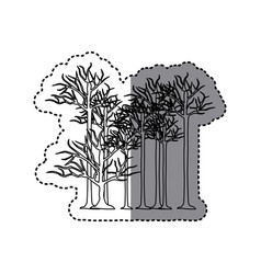 contour trees without leaves icon vector image